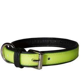 Picture of Julius-K9 IDC® Lumino collar 25mm x 45cm - yellow