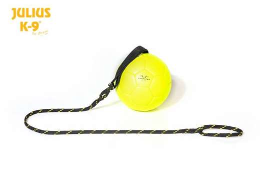 Picture of Show training ball - more sizes and colors