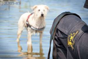 Picture for category K-9® trousers