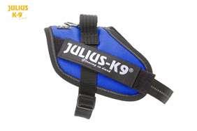 Julius-K9 IDC harness blue size mini-mini