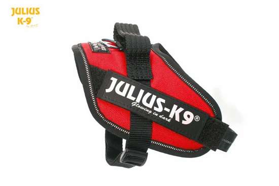 Julius-K9 IDC harness red size mini