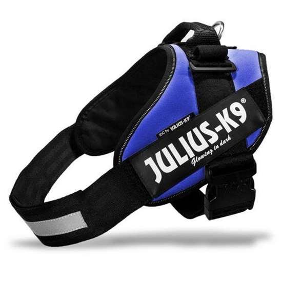 Julius-K9 IDC harness blue size 0