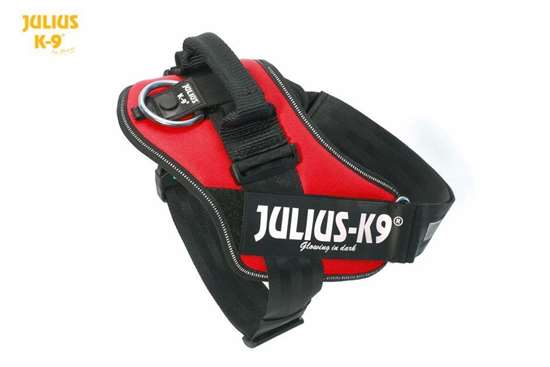 julius-k9-idc-harness-red