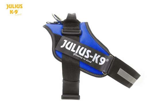julius-k9-harness-idc-blue