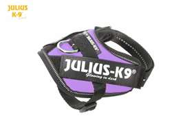 julius-k9-harness-baby-purple