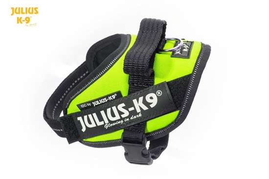 Julius-K9 IDC harness neon size mini-mini