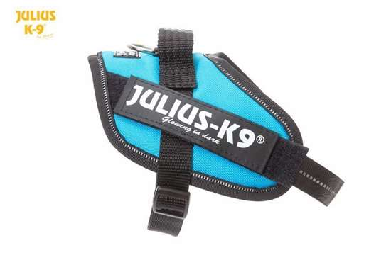 Julius-K9 IDC harness aquamarine size mini