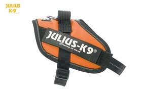 Julius-K9 IDC harness orange size mini