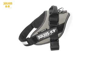 Julius-K9 IDC harness silver size mini