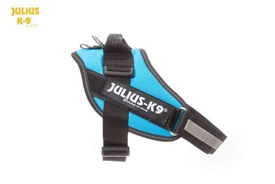 Julius-K9 IDC harness aquamarine size 0