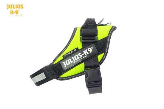 Julius-K9 IDC harness neon size 0