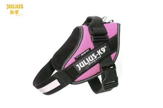 Julius-K9 IDC harness pink size 0