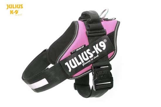 Julius K9 IDC harness pink size 1