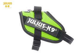Julius K9 IDC harness kiwi green size 2