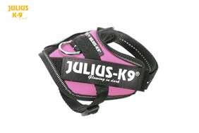 Julius K9 IDC harness pink size 2