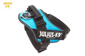 Julius K9 IDC harness aquamarine size 2