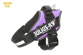 Julius K9 IDC harness purple size 3