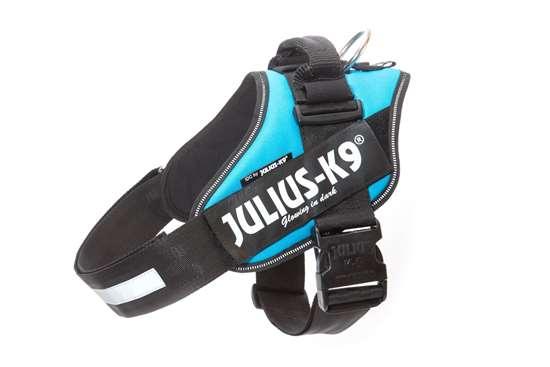 Julius-K9 IDC® Powerharness, Color Aquamarine, Size 4