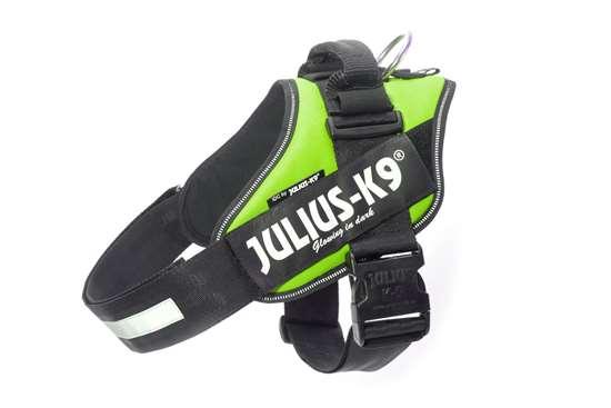 Julius-K9 IDC® Powerharness, Color Kiwi, Size 4