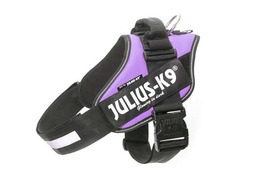 Julius-K9 IDC® Powerharness, Purple, Size 4