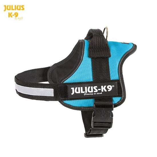 Julius K9 harness aquamarine size 0