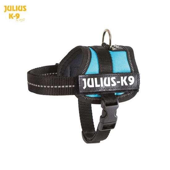 Julius K9 harness aquamarine baby 1