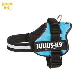 Julius K9 harness aquamarine size 1