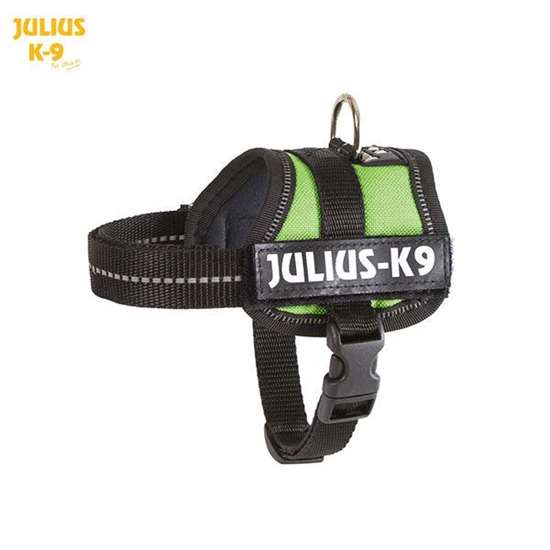 Julius-K9 harness kiwi green size baby 2