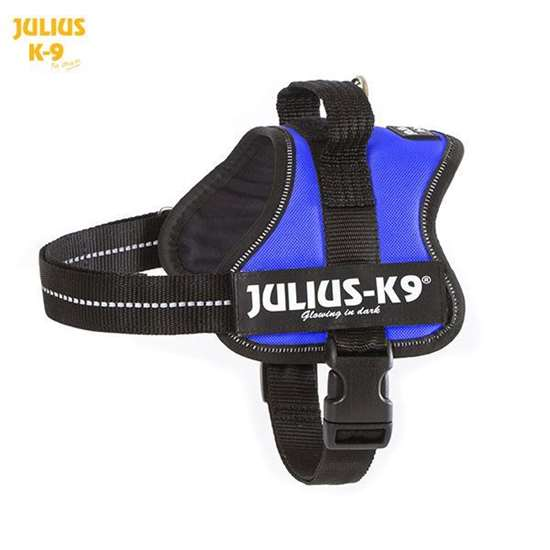 Julius-k9 harness blue size mini-mini