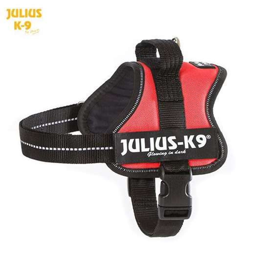 Julius-K9 harness red size mini-mini
