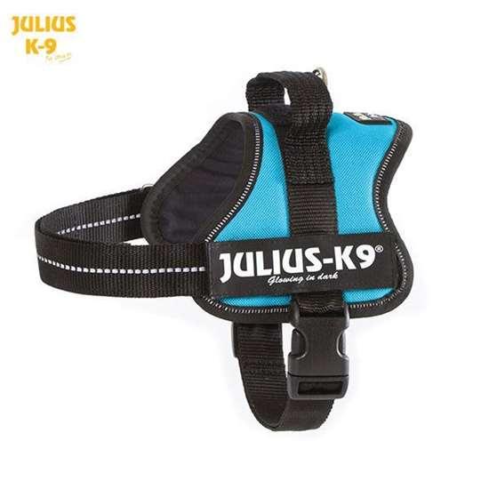 Julius-K9 harness aquamarine size mini