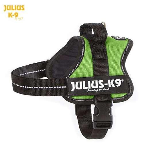 Julius-k9 harness kiwi green size mini
