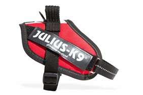 Julius-K9 IDC Flag harness italian size 2