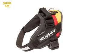 Julius-K9 IDC flag harness german size 2