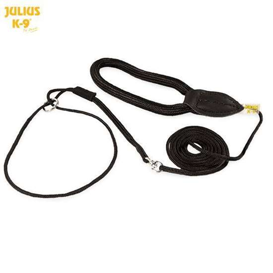 Picture of Show leashes - different lenghts
