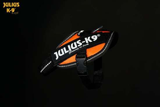 Julius-K9 IDC Powerharness UV orange size baby2