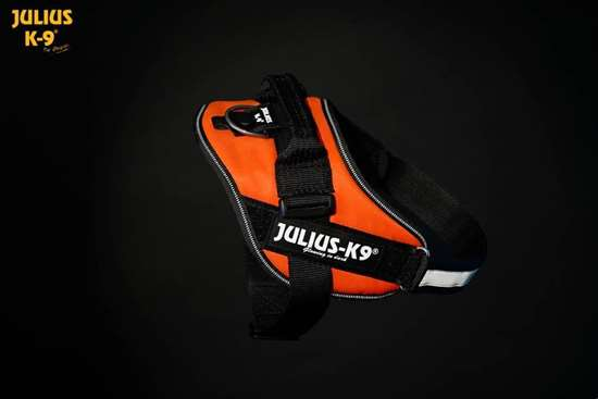 Julius K9 IDC harness uv orange size 2