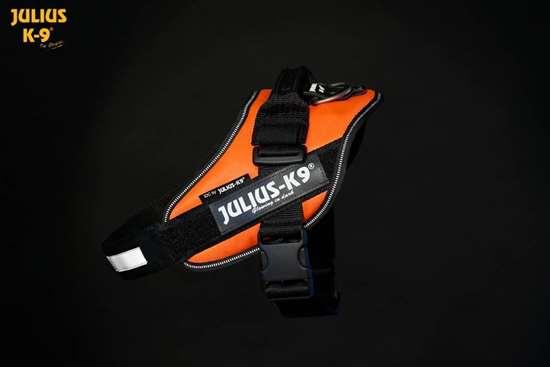 Julius-K9 IDC harness uv orange size 3