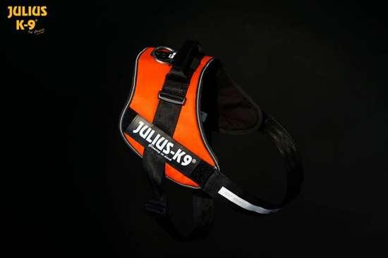 Julius K9 IDC harness uv orange size 0