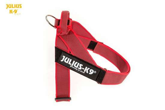 Julius k9 IDC red and gray belt harness