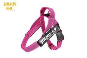 Julius-k9 IDC pink and gray belt harness