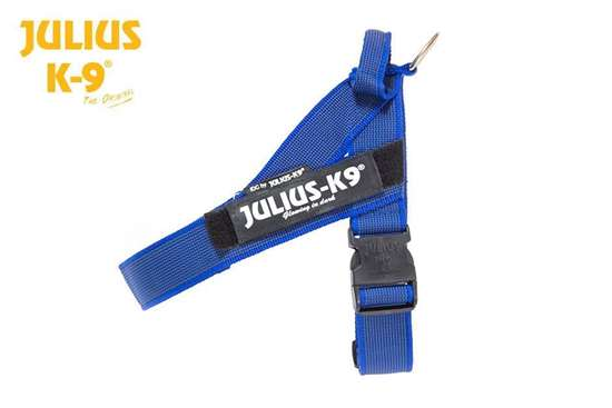 Julius-K9 IDC Blue & Gray belt harness size 1