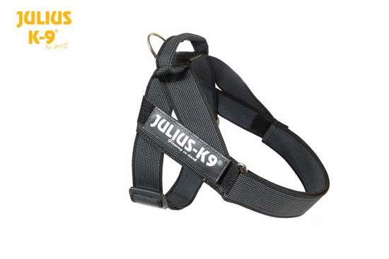 Julius k9 IDC black and gray belt harness