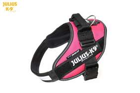 Julius-k9 IDC Powerharness Dark Pink size 0