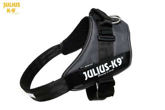 Julius-K9 IDC Powerharness Anthracite Gray Size: 4