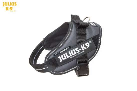 Julius-K9 IDC Powerharness Anthracite Gray Size: Mini