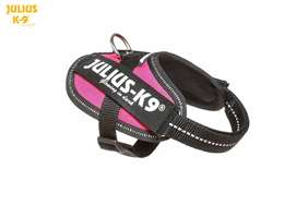 Julius-K9 IDC Powerharness Dark Pink Size: Baby 1