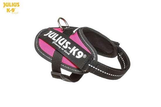 Julius-K9 IDC Powerharness Dark Pink Size: Baby 1