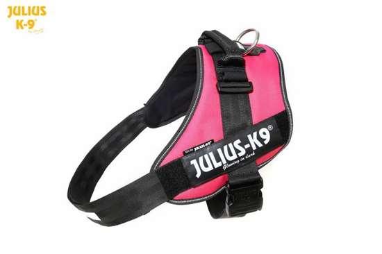 Julius-K9 IDC Powerharness Dark Pink Size: 4