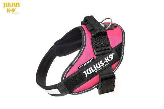 Julius-K9 IDC Powerharness Dark Pink Size: 1